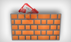 css-protection محافظت از استایل قالب