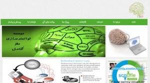nemone2 موسسه توانمندسازی مغز تکامل